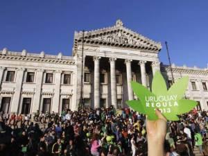 Manifestação a favor da regulamentação da maconha, horas antes de projeto ser aprovado no Senado uruguaio. Crédito: ANDRES STAPFF / REUTERS